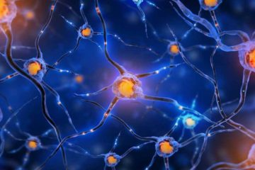 Yes, You can Grow New Brain Cells. Here Is How