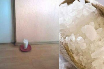 Put a Glass of Water with Salt & Vinegar in Your Home. After 24 Hours, You Will Be very Surprised!
