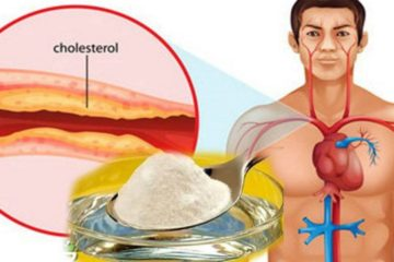The Best Medicine against High Cholesterol & Hypertension