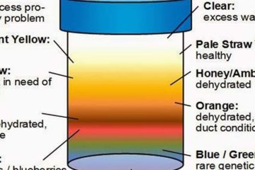 Here Is what Your Urine Color Says about Your Health. Pay Attention!