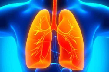 Plant Compound Found to Reverse Lung Damage Linked to COPD