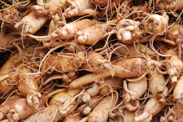 Ginseng: The Legendary Health Benefits of the Immortality & Strength Herb