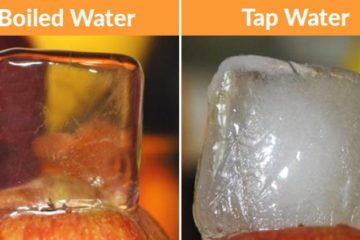 39 Facts about the World that Will Surprise the most Intelligent People