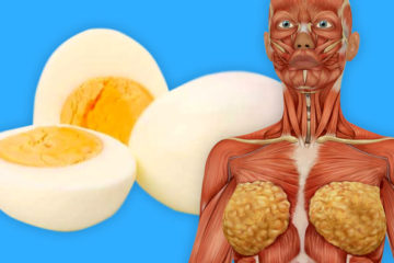 These 6 Things Happen to Your Body If You Start Eating Eggs