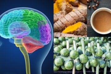 Best 8 Brain Foods: Better Memory, Focus & Mood