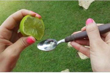 Squeeze One Lemon or Lime & Mix with a Spoon of Olive Oil: You Will not Stop Using It