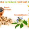 Ease Your Menopause Symptoms: Natural Cures for Hot Flashes