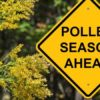 Achoo! Seasonal Allergies Are Here: Learn Useful Tips for an Easy Spring