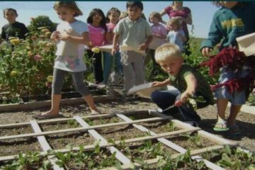Should Children Be Taught How to Grow Food in School?