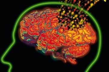 7 Dangerous Ways You Are Causing Slow & Sure Brain Cell Death