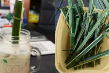 Eco-Friendly Future: Philippine Coffee Shop Uses Straws from Coconut Leaves