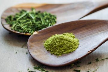 Moringa, the Superfood Everyone Is Talking about