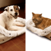 If Your Pet Loves Slippers, You Can Now Buy them Giant Shoe-Like Bed