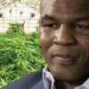 Mike Tyson's 400-Acre Cannabis Resort Looks Out of this World: Check It Out Here