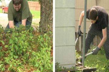 This Iowa School Gives P.E. Credits to Students Who Help the Elderly & Disabled with Yard Work