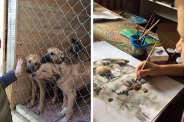 9-Year-Old Boy from Russia Sells His Pet Paintings & Uses the Money to Buy Food for Shelter Animals