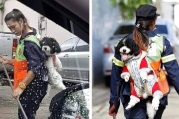 Bangkok Street Sweeper Brings Her Dog with Her to Work every Day