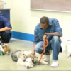Abused Dogs Rehabilitation Program in Lovelock Prison Helps Inmates, Veterans & First Responders
