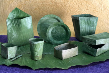 Doing Away with Single-Use Plastics: This Is the New Eco-Friendly Banana Leaf Tech