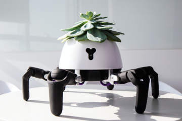 Purchase this Small Robot & It Will Help You Keep Your Plants Alive: Here's How