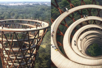 Spiral Path in the Middle of a Danish Forest Lets You Walk among the Treetops