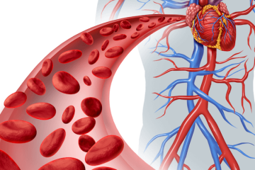 10 Warning Signs Of Poor Blood Circulation That You May Have Ignored