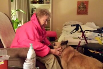 Hospice Program Helps Terminal Patients Keep Their Pets So They Be with Them Until The End