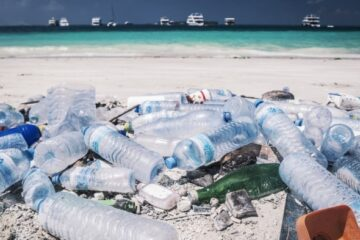 Microplastics Highest in the Maldives, Study Finds
