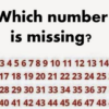 Can YOU Spot the Missing Number in this Viral Puzzle?