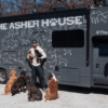 Man Quits High-Flying Job to Travel the Country with His 10 Dogs