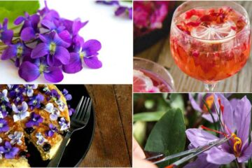 10 Great Edible Flowers: Flavor Your Food & Improve Your Health