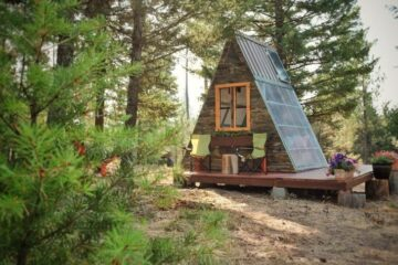 This Cute-as-a-Button Cabin Costs only $700 to be Built