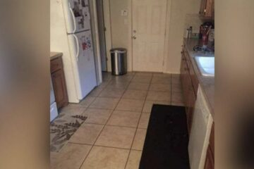 Can YOU Spot the Dog in this Viral Kitchen Photo? A lot of People actually Can't!