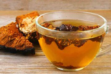 Chaga Tea: Unusual, but Health-Improving Drink