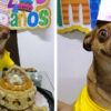 Little Doggo Overjoyed because People Remembered His B-Day