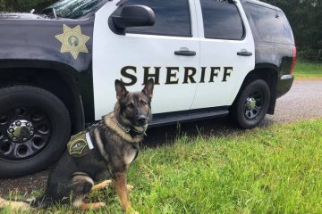 Injured K9 Officer Gets a Hero's Salute when He Left the Hospital