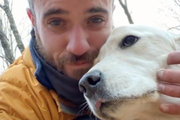 Poor Dog Lost in the Woods for 10 Days during a Winter Storm Saved Thanks to a Drone