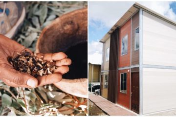 Brilliant Low Income Housing Idea in Columbia: Houses Made of Coffee Waste