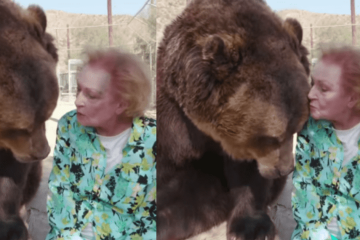 At the Age of 99, Betty White Puts Fear aside & Kisses a Giant Grizzly Bear