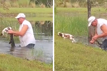 Viral Video: Florida Man 'Wrestles' an Alligator to Save His Puppy