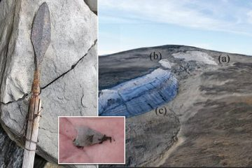 Trove of Ancient Arrows Dating back 6000 Years Discovered on a Norwegian Mountain