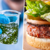 Meet the First Plant-Based Burger Patty: Made from Microalgae with 2X more Protein than Beef