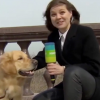 """Naughty"" Dog Snatched the Microphone of a Reporter's Hand on Live TV"