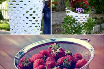 People Are Using Cheap Laundry Baskets to Grow Delicious Strawberries & It's a Genius Idea