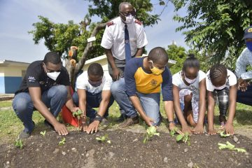 The Children's Nest Home Gets a Beautiful Veggie Garden, Says It Helps with their Trauma