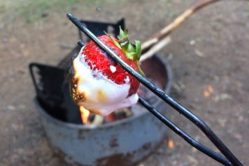 Campfire Strawberries apparently Make You Forget about S'mores
