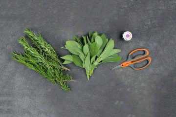 How to Make Your DIY Rosemary Sage Smudge Sticks for Proper Cleanse & Blessings