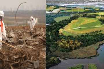World's Largest Garbage Dump Site Transformed into a Green Oasis that Powers Homes