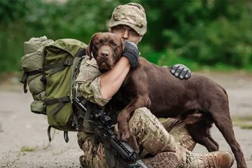 Congress Passes a Bill that Helps Veterans with PTSD Get Service Dogs