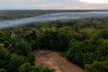 Devastating News: The Amazon Rainforest Is Releasing more Carbon than it Absorbs